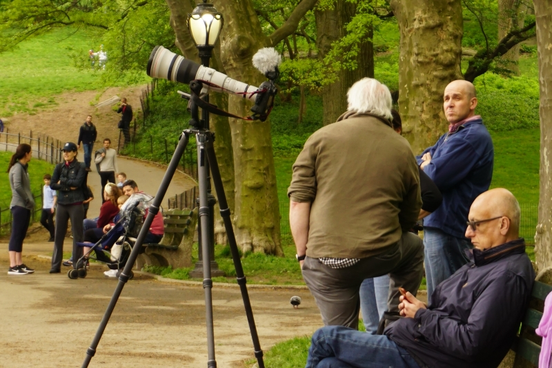 Photography in the Park